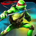 Grand Ninja Turtle Street Fight
