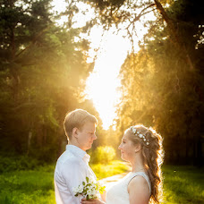 Wedding photographer Alena Polonskaya (AlenaPolonskay). Photo of 29.06.2015