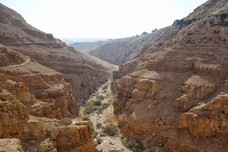 Photo: désert de Judée