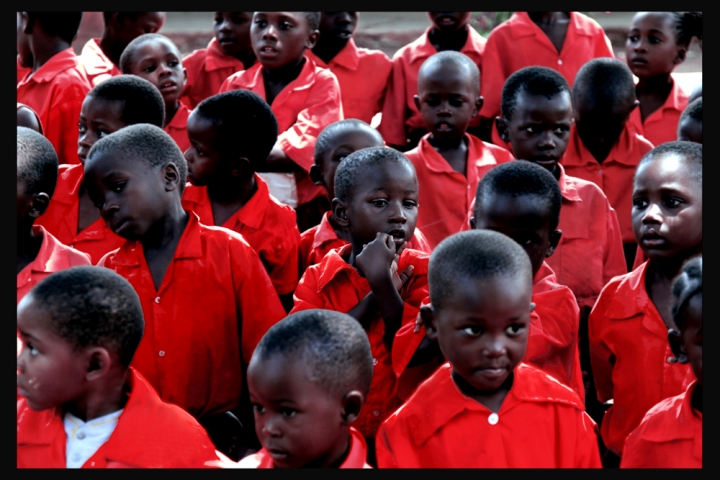 Camicie Rosse. Pensieri Rosa di David Marrone