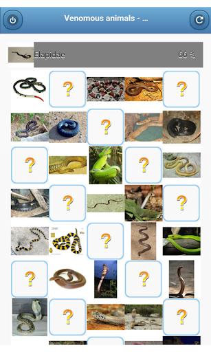Venomous animals - quiz
