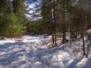 Photo: Since I couldn't snow shoe on the lake I headed up the trail behind our camp.
