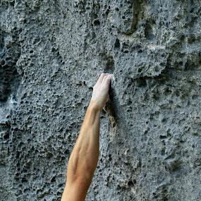 V višino by Janez Žalig - Sports & Fitness Climbing ( počitek, v višino, stena, roka, oprimek )