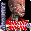 Muscle and Motion Anatomy icon