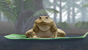 One Big Frog; Caving With Vlad thumbnail