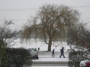 Photo: Recreation Ground February 2009