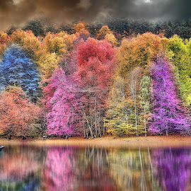 Colors of Autumn by Murat Can - Digital Art Places ( real image, fine art, tree, autumn, colors, digital art )