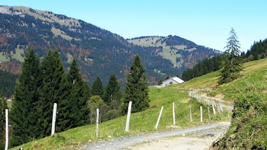 Blick Holzschlagalpe Allgäu Nagelfluhkette