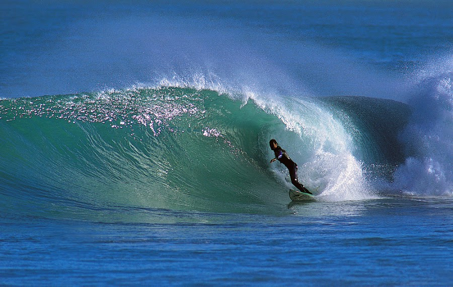 Surf Aotearoa by Paul Kennedy - Sports & Fitness Surfing ( surfing,  sufer,  surf,  wave )