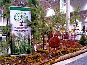 Photo: Fern Ridge worked with several forestry groups including Trees Canada to create this lovely display garden at the Green Living Show to educate the public about the value of forests and of planting trees.
