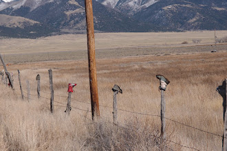 Photo: Country Road GG to VVHS. Folks have been putting boots on fence posts for years--some of them are rotting away. Want a pair of red ski boots--here. Farther there are purple Crocs....