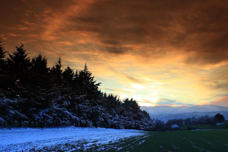pomeriggio di fine inverno di rino_savastano