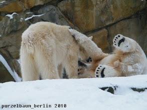 Photo: Alle Tatzen hoooch :-)