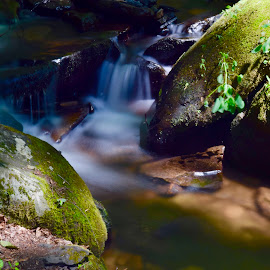 Pond Run Creek by Santford Overton - Landscapes Waterscapes ( landscapes, waterscapes, creek, leaves, rocks, light, longexposure, hills, water, colors,  )