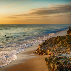 Photographing the Sunrise at Coral Cay by Sandy Friedkin - Landscapes Beaches ( calm, coral cay, photographer, ocean, beach, sunrise,  )