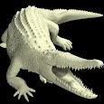 Crocodile Mannequin apk