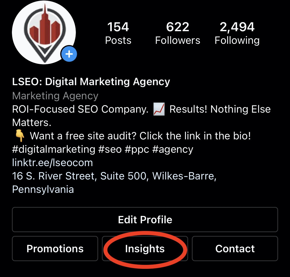 The Instagram Insights Button On LSEO's Profile