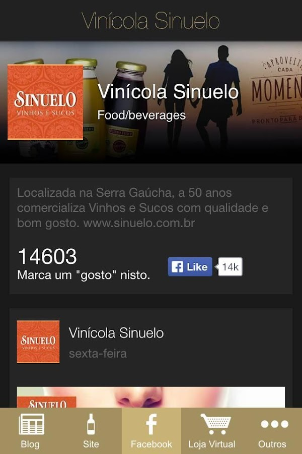 Vinícola Sinuelo- screenshot