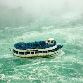 Swirls by Heather Diamond - Transportation Boats