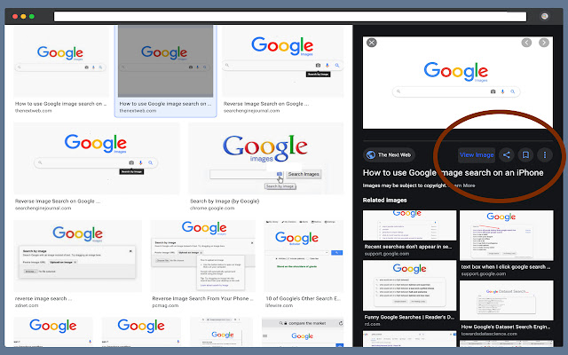 Google View Image Button