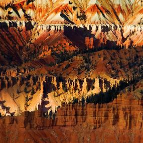 Cedar Breaks by Brent Flamm - Landscapes Deserts ( nature, cedar breaks, utah, landscape )