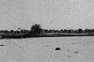 Photo: Chaul hati Indian border, on other side of Chawai river