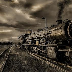 SteamAlive by Rob Vandongen - Transportation Trains (  )