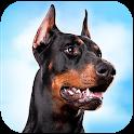Doberman Dog Simulator icon