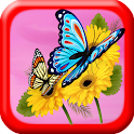 Butterfly Games : Memory icon