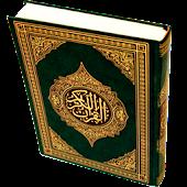 Quran Turkish