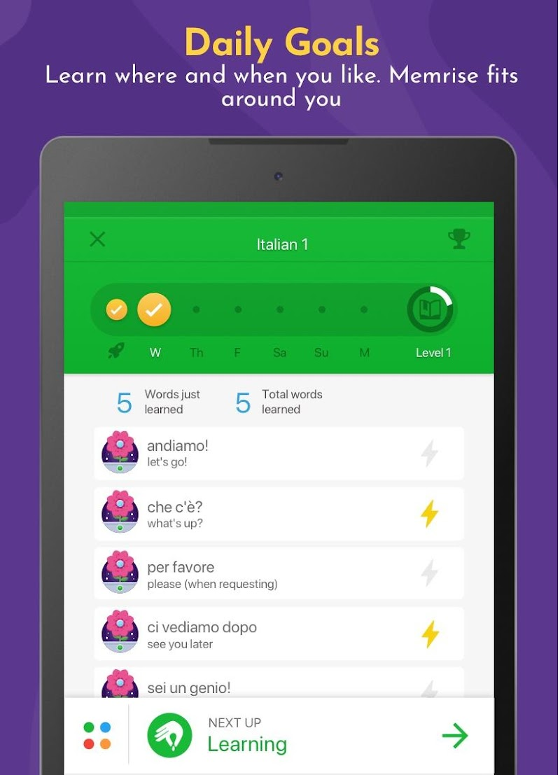 Learn Languages, Grammar & Vocabulary with Memrise Screenshot 8