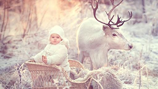 Animals and children. Winter