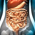 Gastrointestinal System icon