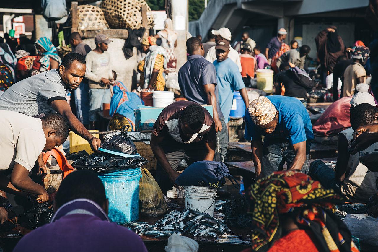Dar es Salaam Fish Market.jpg