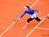 Podoroska vloert Svitolina en bereikt als wildcardspeelster halve finales in Parijs