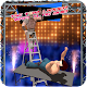 Tag Team Ladder Wrestling 2k18 (game)