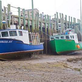 Low Tide in Nova Scotia by Ginger Wlasuk - Transportation Boats ( lobster boats, canada, nova scotia, bay of fundy, boats, tide, low tide )