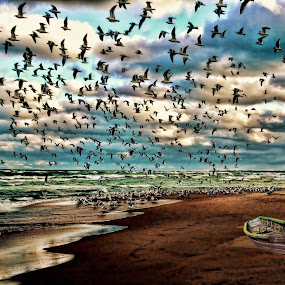 The Birds by Dennis Granzow - Landscapes Waterscapes ( flock of birds, lake michigan, digital art, seascape, beach )