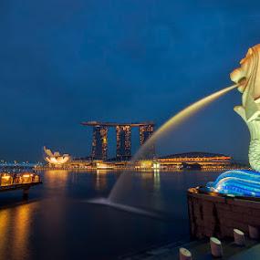 Singapore Icons by Emil Gonzales - Landscapes Travel ( merlion, marina bay sands, singapore flyer, artscience museum, singapore, marina bay )