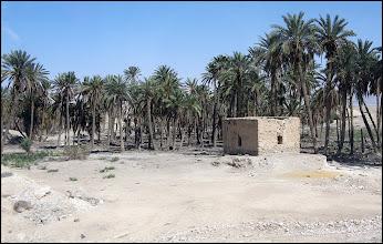 Photo: Кое-где мелькали доты среди чахлых пальм