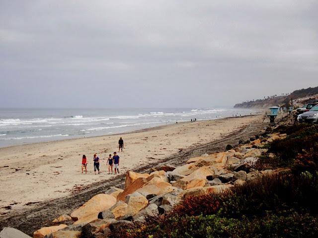 Photo: Torrey Pines state beach