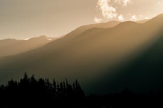 Photo: 'Treetops' - New Zealand 2011