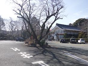 長篠城跡に到着