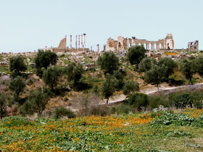 Photo: Volubilis - 2nd century AD ............ 2de eeuw n.C.