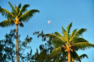 Photo: Hotel Vista Sol Punta Cana