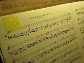 Photo: Mit einem schönen Bach