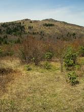 Photo: Wilburn Ridge ahead.