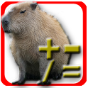Capybara Calculator icon
