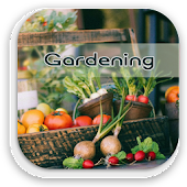 Home Vegetable Gardening Guide