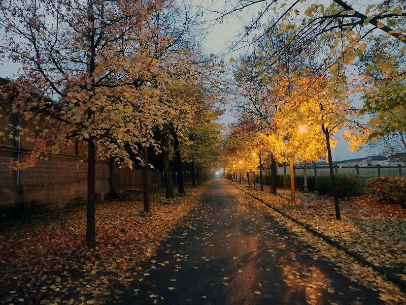 Viale d'autunno di Inazur